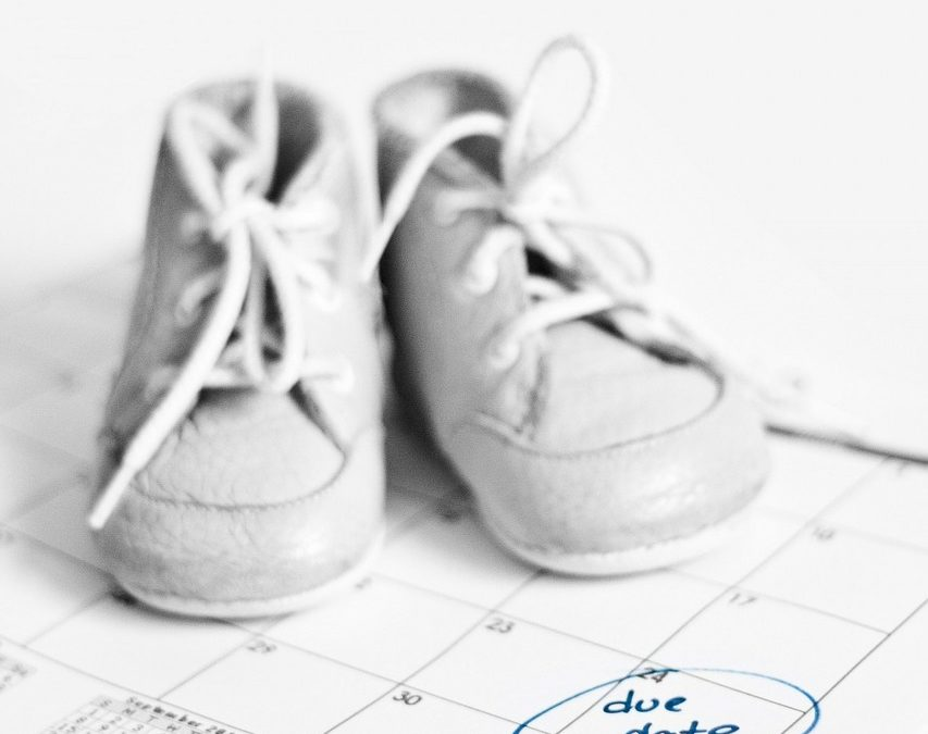 Due Date this Friday, January 25, 2019